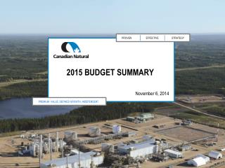 2015 Budget summary