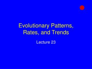 Evolutionary Patterns,  Rates, and Trends