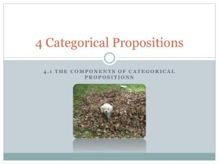 4 Categorical Propositions
