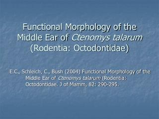 Functional Morphology of the Middle Ear of  Ctenomys talarum  (Rodentia: Octodontidae)
