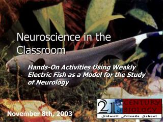 Neuroscience in the Classroom