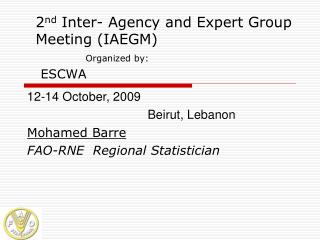 2 nd  Inter- Agency and Expert Group Meeting (IAEGM) Organized by: ESCWA