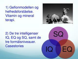 1) Gefionmodellen og helhedsforståelse. Vitamin og mineral terapi.