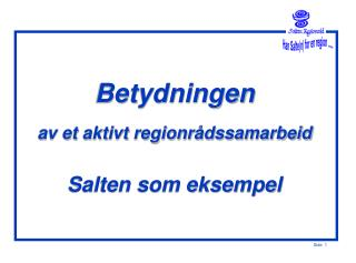 Betydningen  av et aktivt regionr�dssamarbeid Salten som eksempel