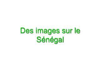 Des images sur le Sénégal