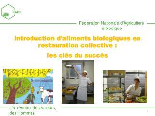 Introduction d'aliments biologiques en restauration collective :  les clés du succès
