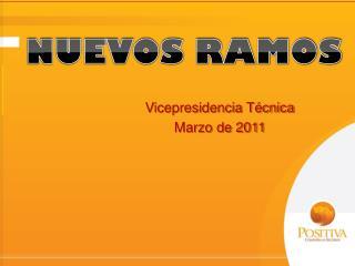 Vicepresidencia Técnica Marzo de 2011