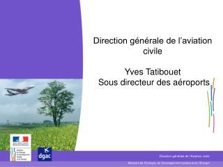 Direction générale de l'aviation civile Yves Tatibouet  Sous directeur des aéroports