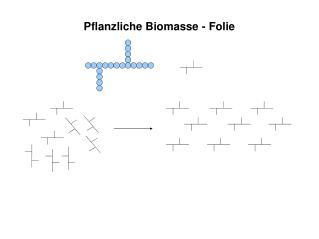 Pflanzliche Biomasse - Folie