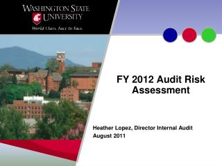 FY 2012 Audit Risk Assessment