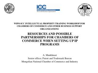 RESOURCES AND POSSIBLE PARTNERSHIPS FOR CHAMBERS OF COMMERCE WHEN SETTING UP IP PROGRAMS