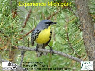 Experience Michigan!