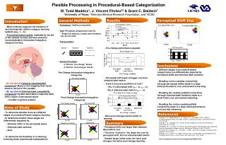 Flexible Processing in Procedural-Based Categorization