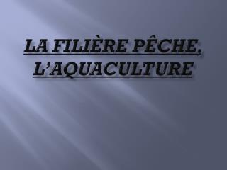La fili�re p�che, l�aquaculture