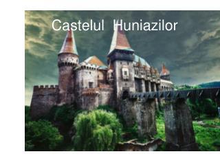 Castelul  Hunia z ilor