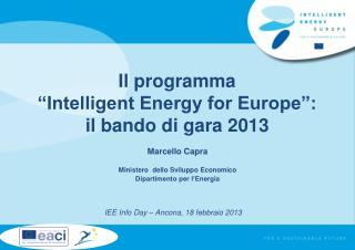 """Il programma """"Intelligent Energy for Europe"""":  il bando di gara 2013"""