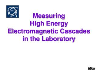 Measuring  High Energy Electromagnetic Cascades  in the Laboratory