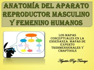 ANATOMÍA DEL APARATO REPRODUCTOR MASCULINO Y FEMENINO HUMANOS