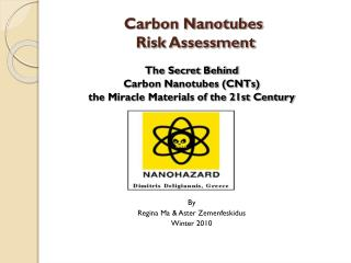 Carbon Nanotubes  Risk Assessment