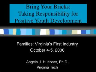 Bring Your Bricks:  Taking Responsibility for Positive Youth Development
