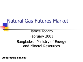 Natural Gas Futures Market
