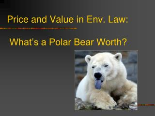 Price and Value in Env. Law:  What's a Polar Bear Worth?