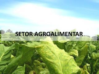 SETOR AGROALIMENTAR