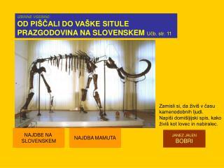 IZBIRNE VSEBINE: OD PIŠČALI DO VAŠKE SITULE  PRAZGODOVINA NA SLOVENSKEM  Učb. str. 11