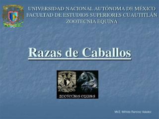 UNIVERSIDAD NACIONAL AUT NOMA DE M XICO FACULTAD DE ESTUDIOS SUPERIORES CUAUTITL N ZOOTECNIA EQUINA