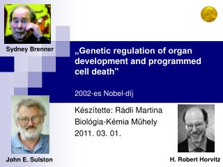 �Genetic regulation of organ development and programmed cell death