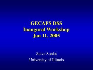 GECAFS DSS  Inaugural Workshop Jan 11, 2005
