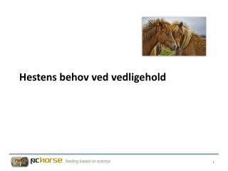 Hestens behov ved vedligehold