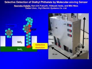 Selective Detection of Dialkyl Phthalate by Molecular-sieving Sensor