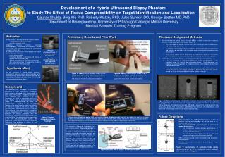 Development of a Hybrid Ultrasound Biopsy Phantom