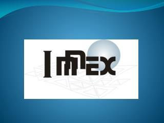 INDUSTRÍA  MANUFACTURERA ,  MAQUILADORA  Y  DE  SERVICIOS  DE  EXPORTACIÓN  ( IMMEX)