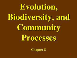 Evolution, Biodiversity, and Community Processes