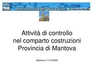 Attivit� di controllo  nel comparto costruzioni Provincia di Mantova