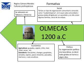 Regina Cámara Morales Culturas prehispánicas