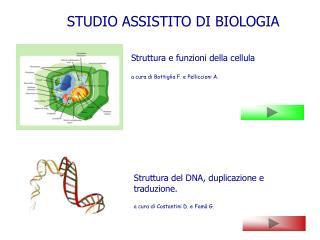 Struttura del DNA, duplicazione e traduzione. a cura di Costantini D. e Famà G.