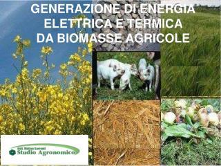 GENERAZIONE DI ENERGIA ELETTRICA E TERMICA  DA BIOMASSE AGRICOLE
