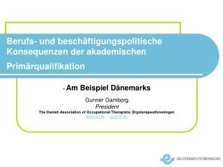 Berufs- und beschäftigungspolitische Konsequenzen der akademischen Primärqualifikation