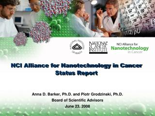 NCI Alliance for Nanotechnology in Cancer Status Report