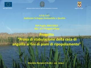A.S.Q. S.r.l. Ambiente Sviluppo Sostenibile e Qualità