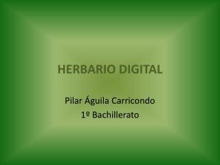 HERBARIO DIGITAL