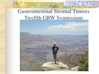 Gastrointestinal Stromal Tumors Twelfth GRW Symposium