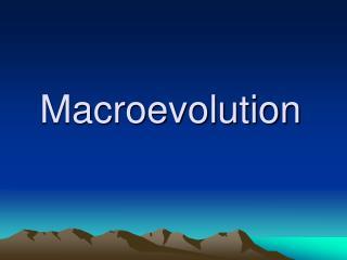 Macroevolution