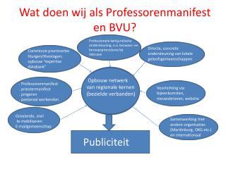 Wat doen wij als  P rofessorenmanifest en BVU?
