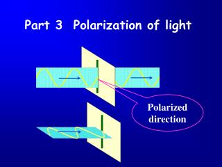 Polarized direction