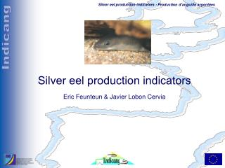 Silver eel production indicators Eric Feunteun & Javier Lobon Cervia