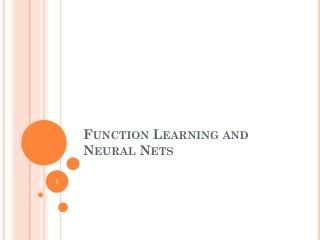 Function Learning and Neural Nets